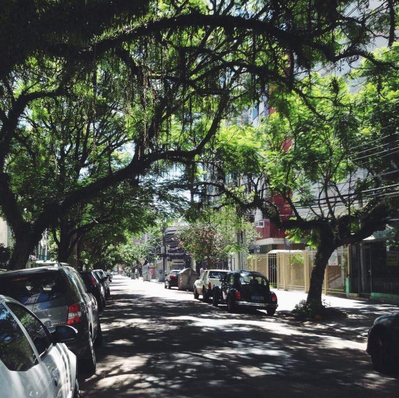 Rua Felipe Camarão super arborizada