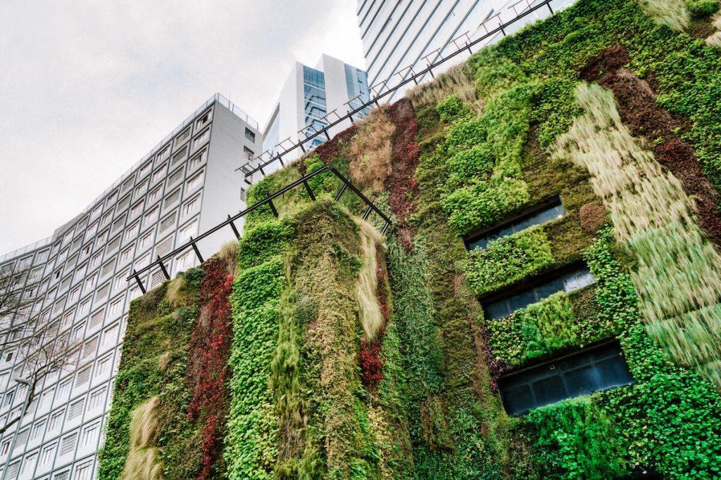 o-que-e-arquitetura-sustentavel